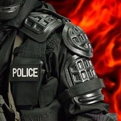 Защита плечей полицейская - фото 13265