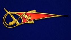 Околыш на берет Морская пехота с автоматом - фото 20471